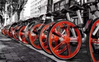 """""""中国自行车第一镇""""旺季冷淡:员工只剩老板和厂长"""