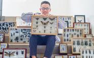 中学生制作800枚昆虫标本