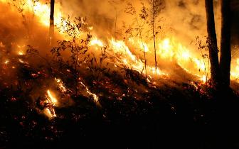在美中国留学生:南加州山火蔓延令人想快快逃离