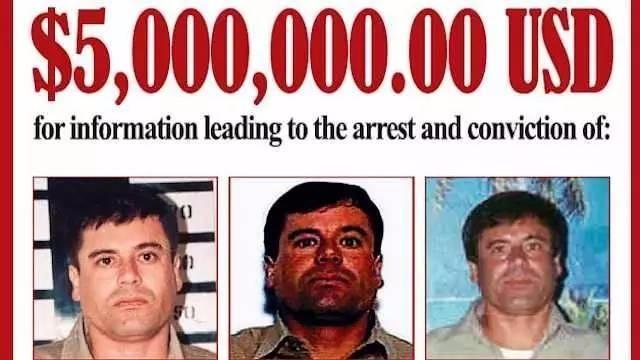 一群绝命毒师,用地道入侵了美国