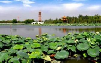 潜江旅游纪录片登陆央视 全景式展现虾乡美景