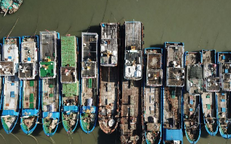 """台风""""玛莉亚""""逼近 福建渔船回港避风"""