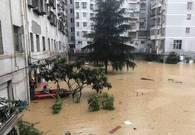 四川暴雨 水涝严重