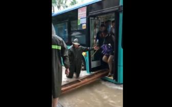 """抖音上获赞254万!深圳公交司机暴雨中搭""""木桥""""火了"""