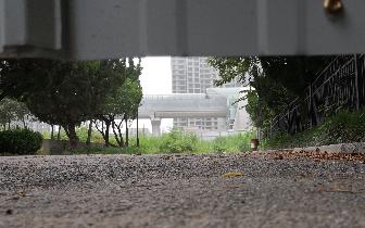小区大门被拆原址将建住宅 业主却不知情