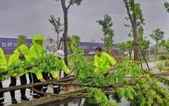 """向风而行护民周全 福州全警抗击台风""""玛莉亚"""""""