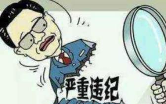 套取扶贫贷款给老婆开店 龙南县环保局干部被处分