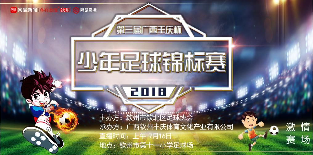 第三届广西丰庆杯少年足球锦标赛