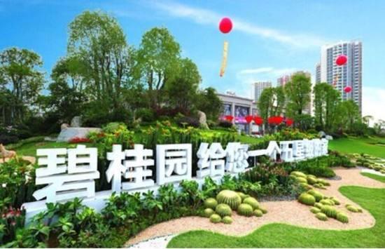 碧桂园暂缓三四五线城市全覆盖同时 暂缓投资拿地