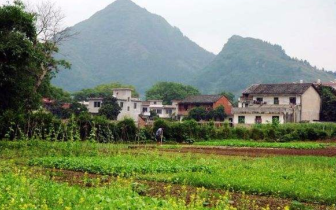 桂林实施乡村振兴战略 促进乡村面貌不断改善