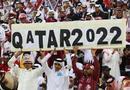 卡塔尔世界杯已凉了?