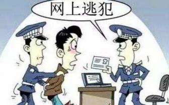 """见警察就得""""羊癫疯"""" 原来是名网上逃犯"""