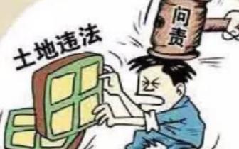 未经批准非法占用基本农田 长乐一公司被责令退还