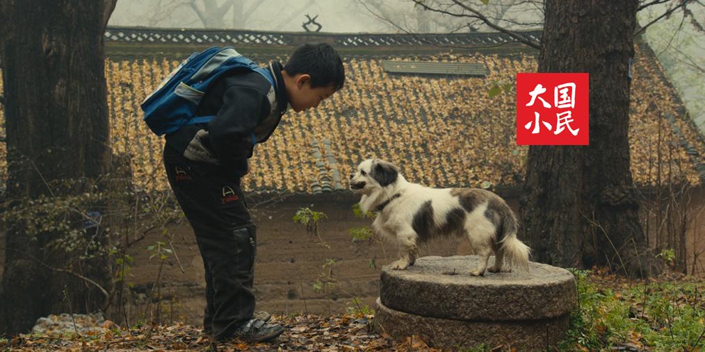 大国小民丨我的第一个朋友,是条老狗