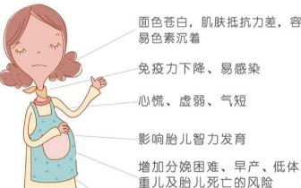 孕期贫血需警惕!这两类不留心会影响胎宝生长发育