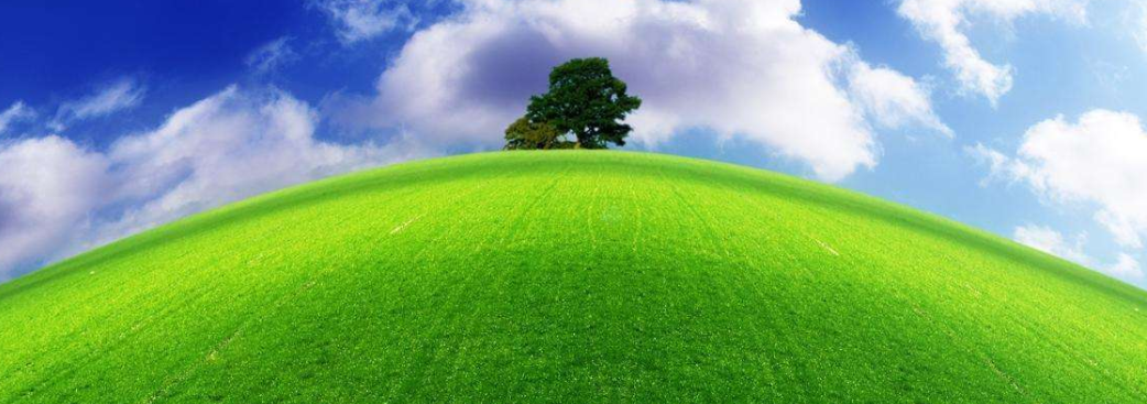 农业农村部:推进农产品质量安全追溯条件已成熟