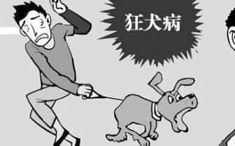 狂犬病疫苗造假事件对福建有影响吗?省疾控回应了