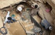 埃及开启新发现的巨型石棺