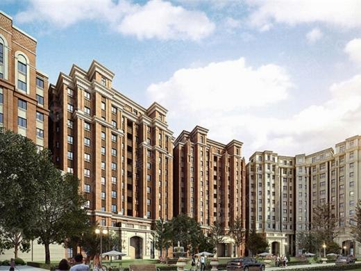 天津中海公园城项目重新规划地块中包含2处菜市场