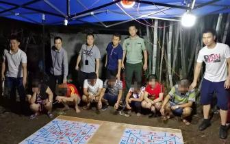 防城港深夜突击 打掉一隐匿在竹林中的赌博窝点