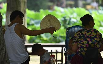 炎炎夏日 老祖宗的避暑神器了解一下