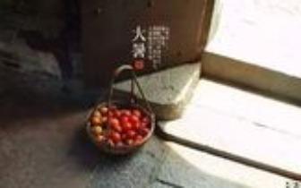 大暑 | 腐草为萤,土润溽暑,大雨时行