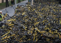 共享单车为何难赚钱 教授:高估用户素质低估对
