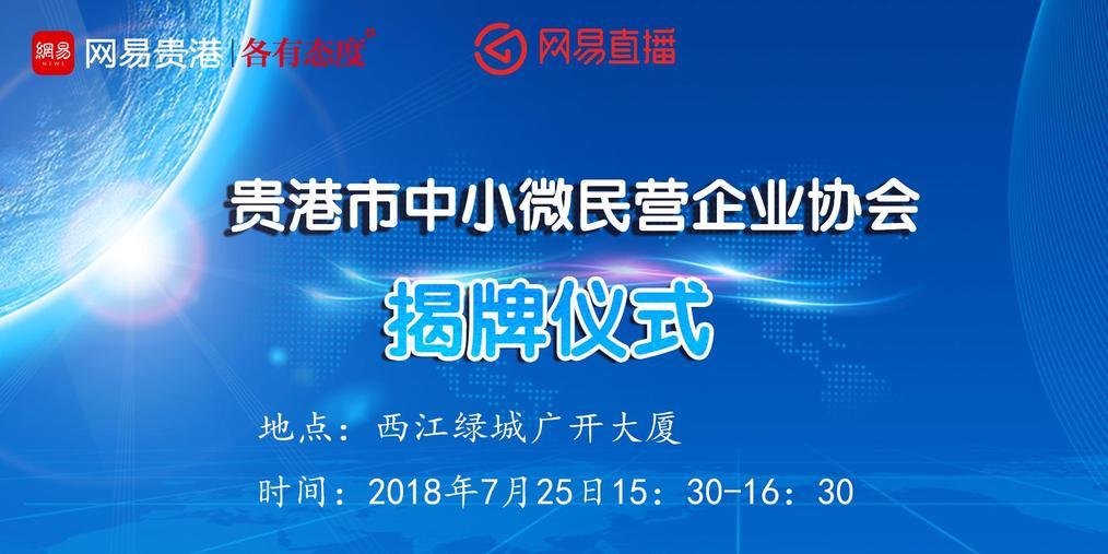 贵港市中小微民营企业协会揭牌仪式