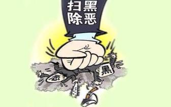 桂林市永福县罗锦镇开展扫黑除恶宣传
