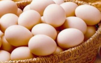 """一斤4.3元!郑州鸡蛋开启""""火箭蛋""""模式"""