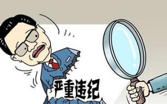 闽通报一批典型案例 涉及厦门、南平、福州等地