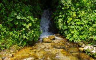 宏路高速口附近泉水不宜饮用 检测显示水质呈酸性