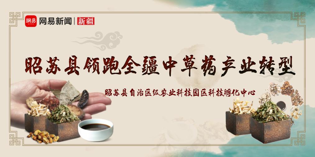 昭苏县全力打造生态文明县 领跑全疆中草药产业转型