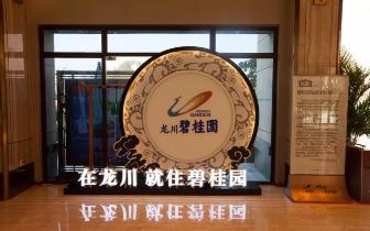 7.27 龙川碧桂园13号楼加推