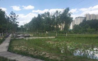 生态环境部督查黑臭水体整治 21城未达标 桂林上榜