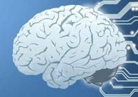利用AI等新技术 百度上半年共处理145.4亿条有害