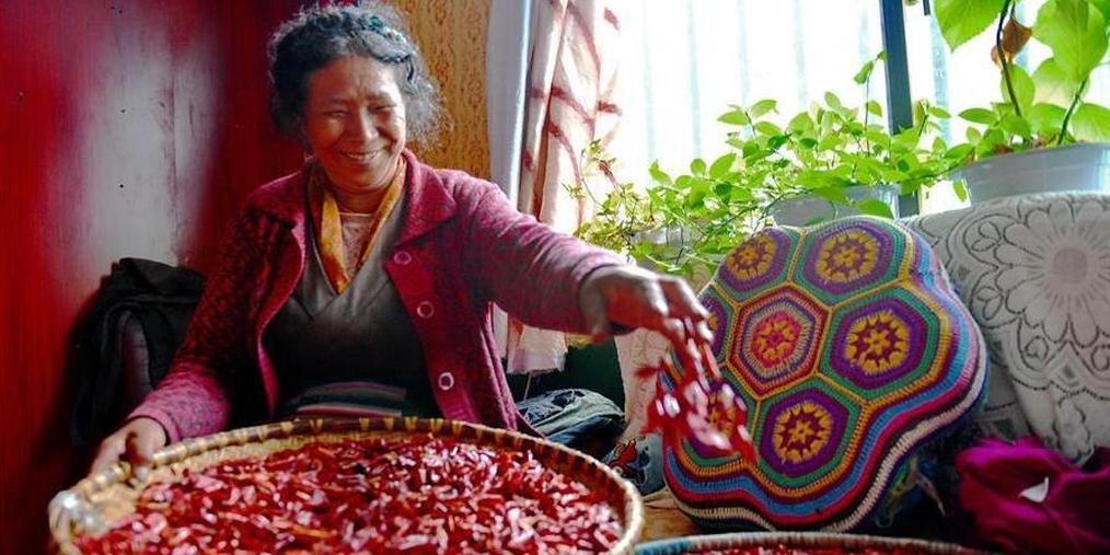 西藏日喀则:玛嘎村的幸福生活