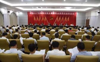 东兴召开中共东兴市第五届委员会第四次全体会议