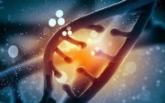 人类寿命是否存在上限?听听科学家的看法
