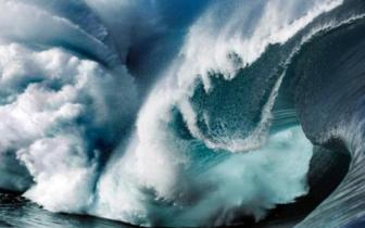 """研究称全球海洋""""荒野""""或在半世纪内消失"""
