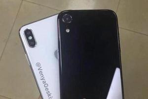 6.5与6.1英寸iPhone X真机曝光