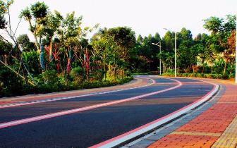 我市今年已建成绿道30多公里 市民休闲增添好去处