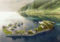 有人想造浮岛建国,可发币没获大佬支持结果惨淡