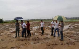 防城港市现场鉴定土地违法案件破坏耕地行为