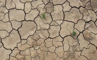 江西11设区市均现旱情 永修、上栗旱情尤为严重