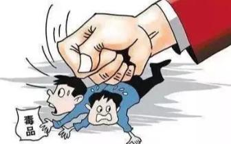 案件发布 走私毒品1.4千克!一越南籍男子被批捕