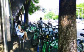 共享单车| 南昌一公交站台共享单车排长龙 乱停现象严重
