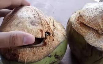 小摊贩的老板有创意:椰子内另有乾坤