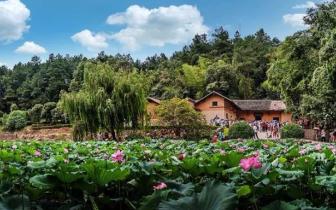 新闻 ▏新时代新起点 湖南全域旅游开启新篇章
