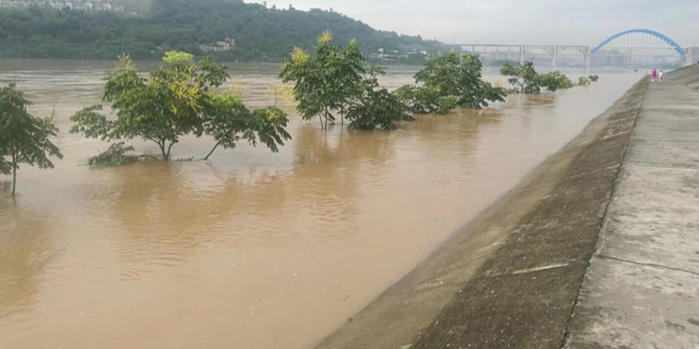 岷江洪峰过境,宜宾多个乡镇受灾